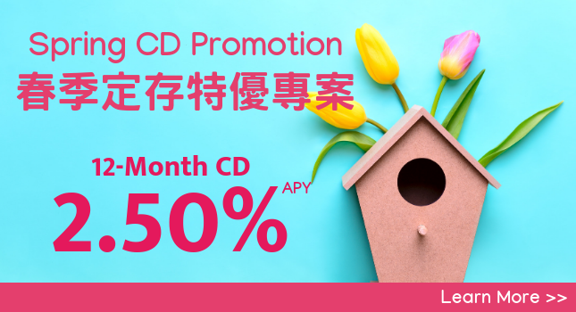 Spring CD Promotion Rotating Banner in Simplified Chinese